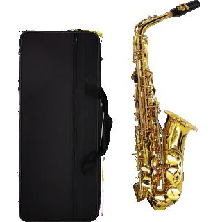 Alto Saxophone - แซกโซโฟน อัลโต้ PIETRO S100A สีทอง
